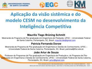 Aplicação da visão sistêmica e do modelo CESM no desenvolvimento da Inteligência Competitiva