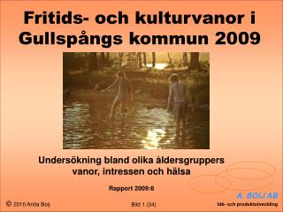 Fritids- och kulturvanor i Gullspångs kommun 2009