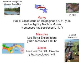 Martes Haz el vocabulario en las páginas 47, 51, y 56,  lee Un Agutí y Muchos Monos