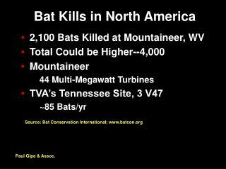 Bat Kills in North America