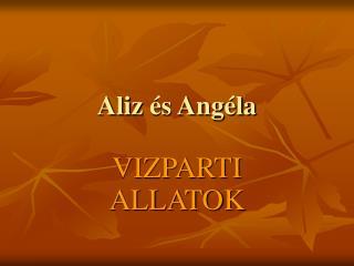 Aliz  és Angéla