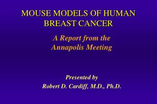 MOUSE MODELS OF HUMAN BREAST CANCER