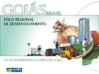 GOIÁS NO CENÁRIO NACIONAL  3º maior rebanho bovino do país  2º maior produtor de leite