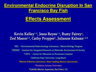 Environmental Endocrine Disruption In San Francisco Bay Fish  Effects Assessment