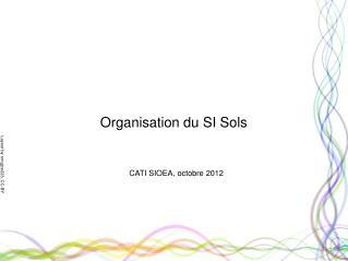 Organisation du SI Sols