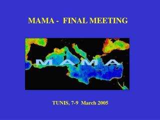 MAMA -  FINAL MEETING