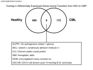 Overlap in Differentially Expressed Genes during Transition from HSC to CMP