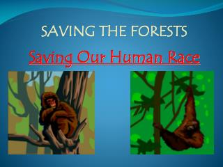 SAVING THE FORESTS