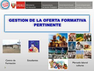 GESTION DE LA OFERTA FORMATIVA PERTINENTE