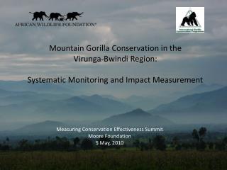 Mountain Gorilla Conservation in the  Virunga-Bwindi  Region: