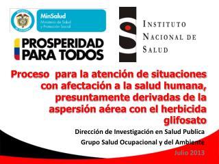 Dirección de Investigación en Salud Publica Grupo Salud Ocupacional y del Ambiente Julio 2013