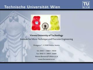 Vienna University of Technology Institute for Micro Technique and Precision Engineering