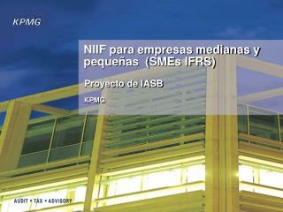 NIIF para empresas medianas y pequeñas  (SMEs IFRS)