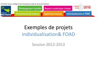 Exemples de projets individualisation& FOAD