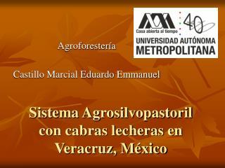 Sistema Agrosilvopastoril con cabras lecheras en Veracruz, México