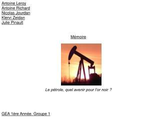 Antoine Leroy Antoine Richard Nicolas Jourdan Klervi Zeidan Julie Pinault Mémoire
