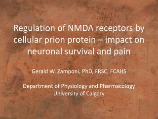 Regulation of NMDA receptors by cellular  prion  protein – impact on neuronal survival and pain
