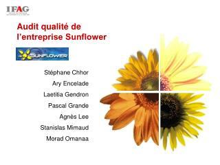 Audit qualité de l'entreprise Sunflower