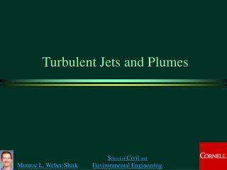 Turbulent Jets and Plumes