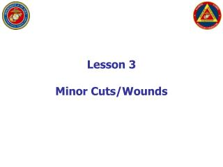 Lesson 3 Minor Cuts/Wounds