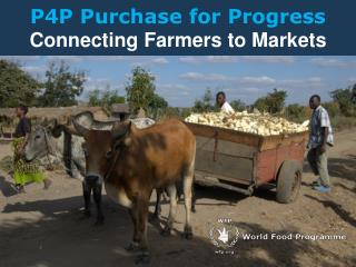 P4P Purchase for Progress  Connecting Farmers to Markets
