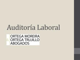 Auditor�a Laboral