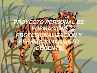 PROYECTO PERSONAL DE FORMACIÓN, PROFESIONALIZACIÓN Y PERFECCIONAMIENTO DOCENTE