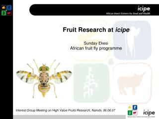 Fruit Research at  icipe Sunday Ekesi African fruit fly programme