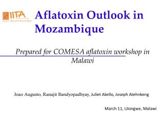 Aflatoxin Outlook in Mozambique