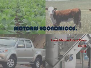 SECTORES ECONOMICOS.