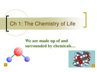 Ch 1: The Chemistry of Life