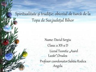 Spiritualitate  şi tradiţie: obiceiul de turcă de la Topa de Sus,judeţul Bihor