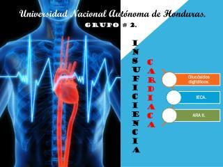 Universidad Nacional Au tónoma de Honduras.