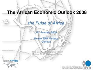 The African Economic Outlook 2008