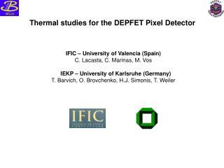 Thermal studies for the DEPFET Pixel Detector