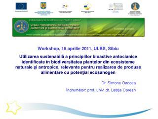 Workshop, 15 aprilie 2011, ULBS, Sibiu