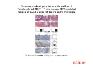 P-S Welz  et al .  Nature 000 ,  1 - 5  (2011) doi:10.1038/nature10273