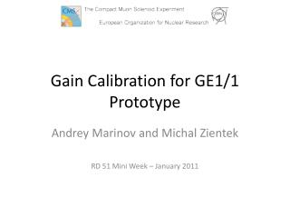 Gain Calibration for GE1/1 Prototype