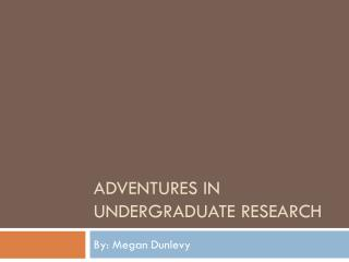 Adventures in Undergraduate Research