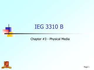 IEG 3310 B