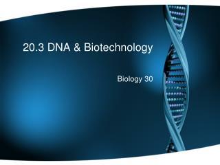 20.3 DNA & Biotechnology