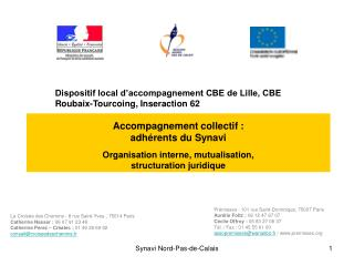 Accompagnement collectif :  adh rents du Synavi  Organisation interne, mutualisation,  structuration juridique