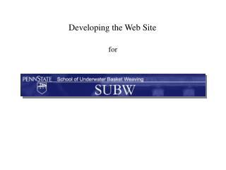 Developing the Web Site