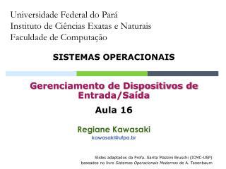Universidade Federal do Pará Instituto de Ciências Exatas e Naturais Faculdade de Computação
