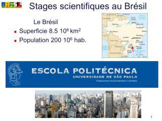 Stages scientifiques au Brésil
