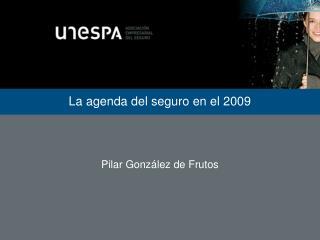 La agenda del seguro en el 2009