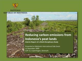 Reducing carbon emissions from Indonesia's peat lands Interim Report of a Multi-Disciplinary Study