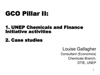 GCO Pillar II:  1.  UNEP Chemicals and Finance Initiative activities  2. Case studies