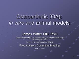 Osteoarthritis OA:  in vitro and animal models