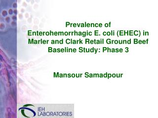 Prevalence of  Enterohemorrhagic E. coli EHEC in Marler and Clark Retail Ground Beef Baseline Study: Phase 3   Mansour S